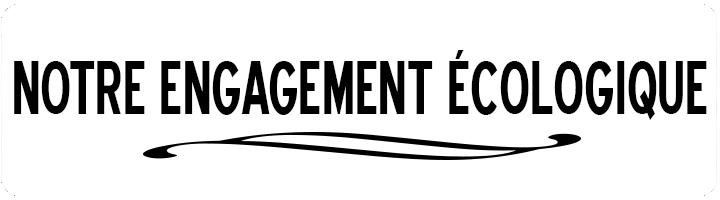 -engagement-ecologique-fsc-pefc-label-ange-bleu--